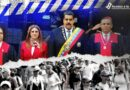 El «paquetazo penal» no resuelve los problemas de fondo de la justicia en Venezuela